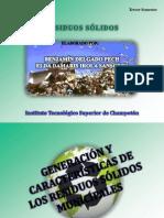 GENERACION Y CARACTERISTICAS de RSM (Benjapemin Delgado Pech - Elda Damaris Irola Sansores.