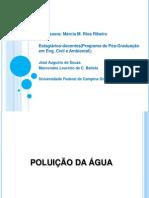 Poluiodasguas (1)