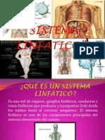 Sistema Linfático (Final)