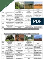 Esquema-Resumen Medios Naturales.doc