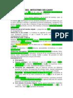 13.- Obstrucción Del Intestino Delgado