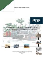 Ferrovias - Da Produção de Riquezas Ao Apoio Logístico No Triângulo Mineiro