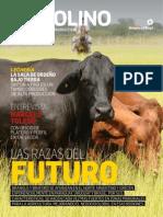 3707bd8317.pdf