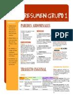 Resumen PDF