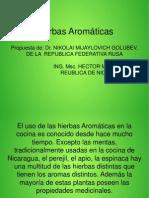 HIERBAS AROM+üTICAS.pptx