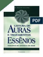 Anne Meurois Givaudan - A Leitura de Auras e Tratamentos Essenios Terapias de Ontem e de Hoje