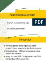 Asam Nukleat & Kromatin 1
