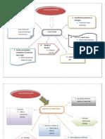 Graphic Organiser Factor