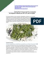Urbanismo Ciudad Verde