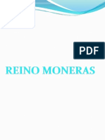 Reino Moneras