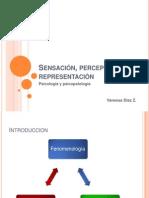 Sensación, Percepción y Representación (1)