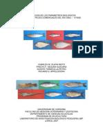 Estimacion de los parametros biologicos basicos de peces comerciales del Rio Sinu-II Fase