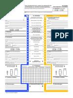 Europa-Unfallbericht.pdf