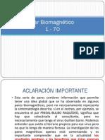 Imagenes Cuerpo Pares Biomagneticos
