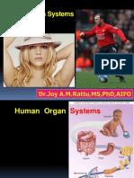 Joy Organ Systems Pskg
