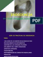Endodocia Consideraciones Prácticas