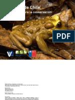 Conservacion de Anfibios de Chile - Desafíos Para Su Conservación (2013)