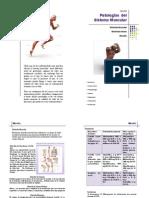 PATOLOGIAS DL SISTEMA MUSCULAR.pdf