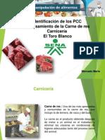Pcc Sena Actividad 4
