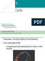Biology Cellcycle