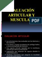 Evaluación Articular y Muscular
