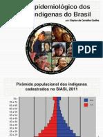 Perfil_Epidemiologico_dos_Povos_Indigenas_do_Brasil.pdf