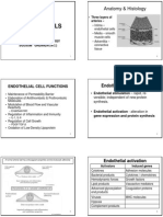 Cardiovascular + Clinical Scenarios