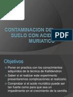 Contaminacion Del Suelo Con Acido Muriatico