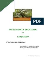 3- Inteligencia Espiritual