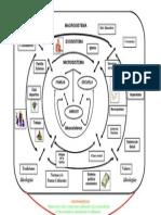 Modelo Ecosistema