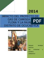 Proyecto Del Impacto Del Proyecto Gas de Camisea