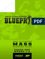 arnoldblueprint mass phaseone-v1 1