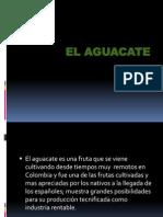 El Aguacate Expo Agro