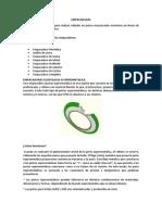Empaquetador y Tapones Informe