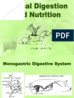 Animal Digestion and Nutrition
