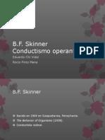 Skinner.pptx