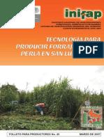 Tecnología Para Producir Forraje de Mijo Perla en SLP