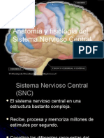 Anatomia Fisio Log i as Nc