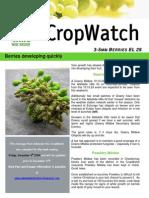 Adelaide Hills Crop Watch 041209