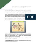 ECG trabajo escrito.docx