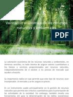 valoracion economica ambiental