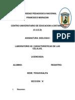 laboratorio #2 caracteristicas de las celulas.docx