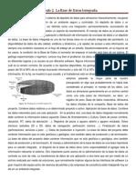 Capitulo 2 Cosentino, Resumen de Base de Datos Integrada.