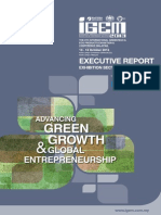 15. IGEM2013 Executive Report