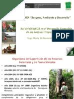3 Osinfor.pdf