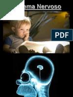 1 - Introducao Ao SN PDF