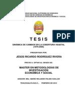 DINÁMICA DE CAMBIOS EN LA COBERTURA VEGETAL  (1975-2005)