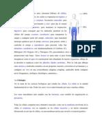 Tutoria Generalidades de La Anatomia