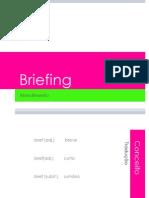 briefing-090717132851-phpapp01