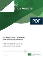2010 Roadmap Smart Grids Austria